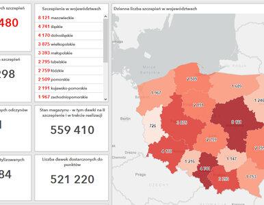 Tak przebiega proces szczepień w Polsce. Mapa ze szczegółowymi informacjami