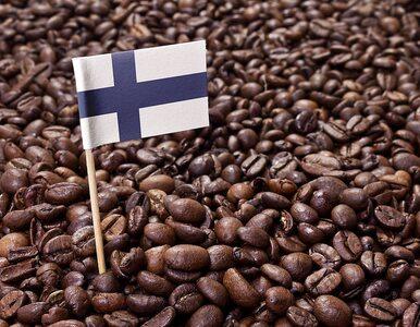 Naukowcy odkryli sposób na to, by uprawiać kawę w... Finlandii. Jak...