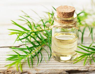 5 najlepszych olejków na katar i przeziębienie. Do kąpieli i inhalacji