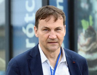 """Radosław Sikorski zaatakował Beatę Kempę. """"Walnij się w zatłuszczony łeb"""""""