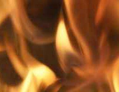 Pożar na A1 - spłonął autobus wiozący dzieci