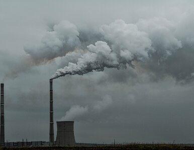 NIK: Zmarnowano 9 miesięcy w walce ze smogiem