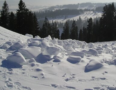 W Gorcach odnaleziono szkielet narciarza. To poszukiwany od 9 lat profesor?
