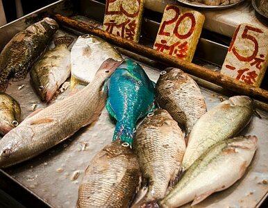 Korea Płd. zwiększy kontrolę japońskiej żywności