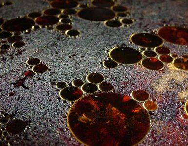 Ropa wciąż wycieka. BP zrezygnuje z nowej kopuły?