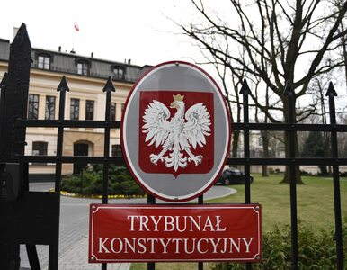 Po spotkaniu Komisji Weneckiej z TK: Byli poruszeni sposobem traktowania...