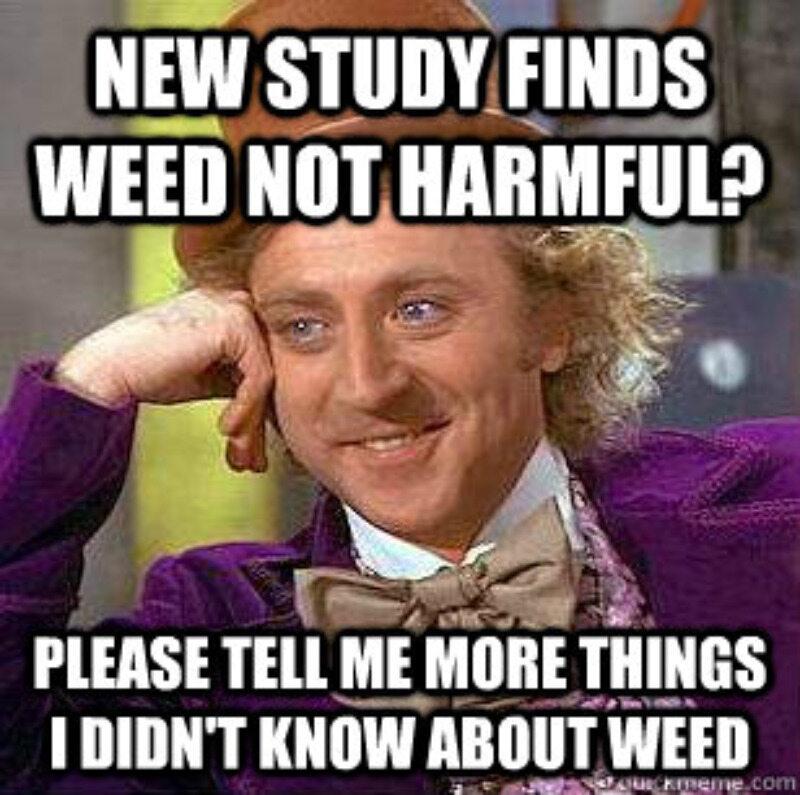 Badania pokazują, że zioło jest nieszkodliwe? Proszę powiedz mi więcej nieznanych faktów o trawie