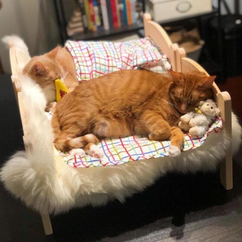 Mini łóżko IKEA - idealne dla kotka(ów)