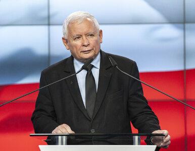 Najnowszy sondaż. PiS znów rośnie, Konfederacja poza Sejmem