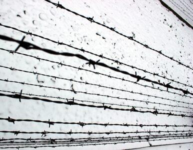 """Nowy Jork: Mężczyzna został w celi """"praktycznie upieczony"""""""