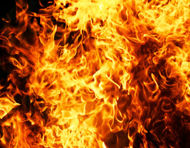 Rodzice adopcyjni spalili zwłoki 6-latki
