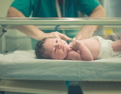 Naukowcy: Dzieci po cesarskim cięciu mają deficyt mikrobiomu. Z czasem...