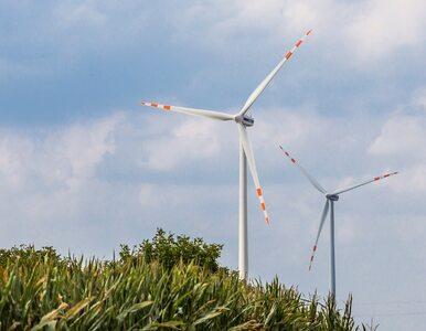 Tauron chce zastąpić kopalnie wiatrakami