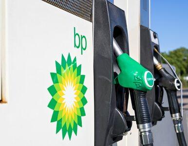 """""""BP musi się na nowo zdefiniować"""". Nowy szef koncernu zapowiada..."""