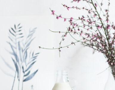 Czy mleko owsiane jest faktycznie dobre dla zdrowia?