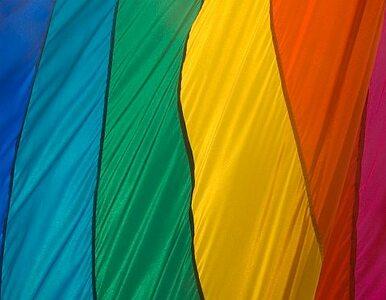 Wiceprezydent Radomia i radny PiS nie obrazili homoseksualistów