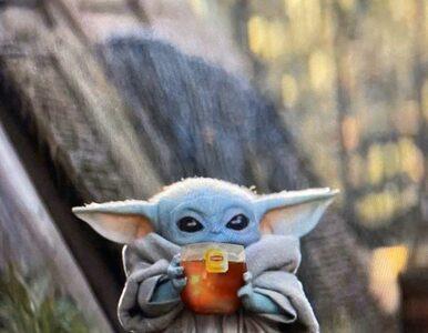 """Baby Yoda popija zupę. Zachwycona reżyserka """"Mandaloriana"""" o kulisach..."""