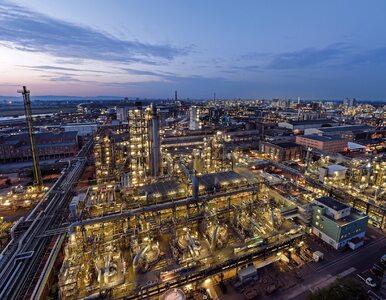 BASF przedstawia plan działania na rzecz neutralności klimatycznej