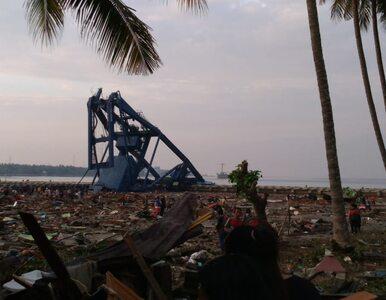 Silne trzęsienie ziemi i tsunami w Indonezji. Dziesiątki ofiar śmiertelnych