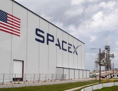 Elon Musk z kontraktem od Pentagonu. SpaceX dostanie 149 mln dolarów