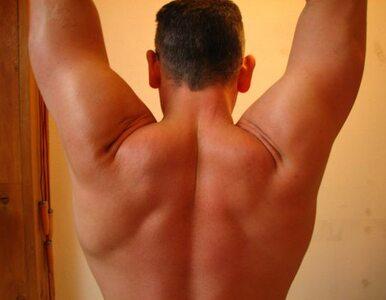 Proteiny po wysiłku pomagają wzmocnić mięśnie