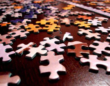Co puzzle mówią o rozwoju dziecka? Więcej niż sądziliśmy