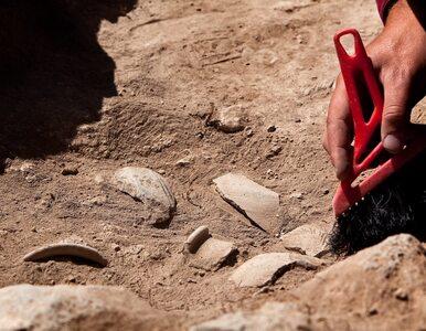 Ameryka zaludniona 20 tys. lat wcześniej niż myślano? Nowe badanie...