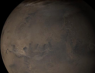 Postanowione - człowiek leci na Marsa