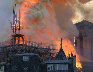 Zrobiła zdjęcie tuż przed pożarem Notre Dame. Teraz szuka bohaterów...