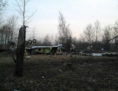 Były pełnomocnik Kaczyńskiego: trzy osoby przeżyły katastrofę?...