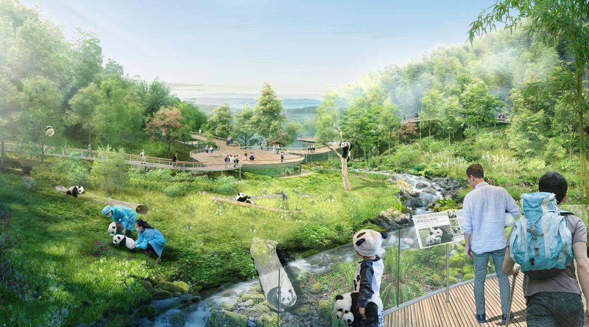 Rezerwat dla pand Rezerwat dla pand w Chengdu