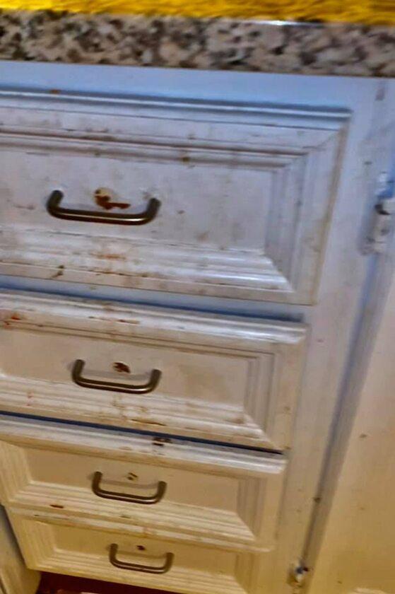 Fekalia na szufladach