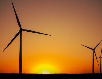 PZU inwestuje w zieloną przyszłość