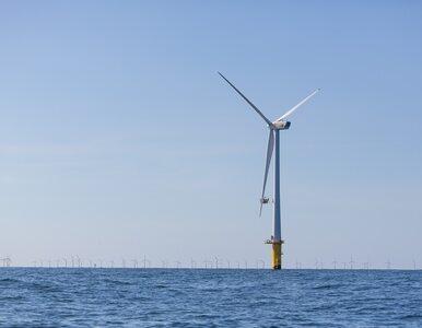 Zanim na Bałtyku staną wiatraki