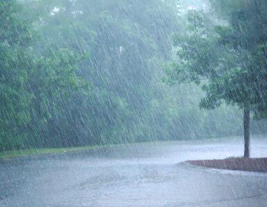Nadchodzi ochłodzenie i deszcz. Pogoda na najbliższe dni