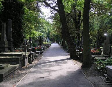 Plaga kradzieży na Powązkach. Zniszczono groby artystów i powstańców