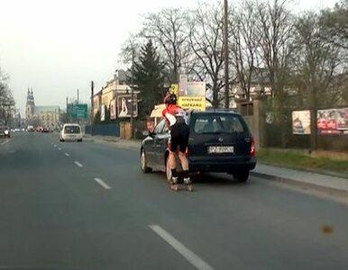 Pirat na rolkach jechał slalomem ulicami Poznania