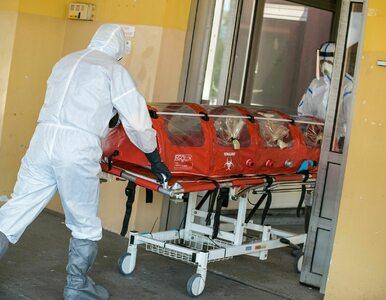 Gwałtowny przyrost zakażeń koronawirusem w Polsce! W piątek niemal 1600...