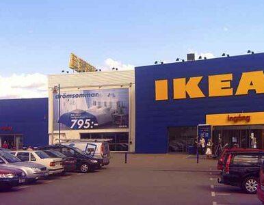 Dentysta i politolog z Polski chcieli wysadzać sklepy Ikea w całej Europie