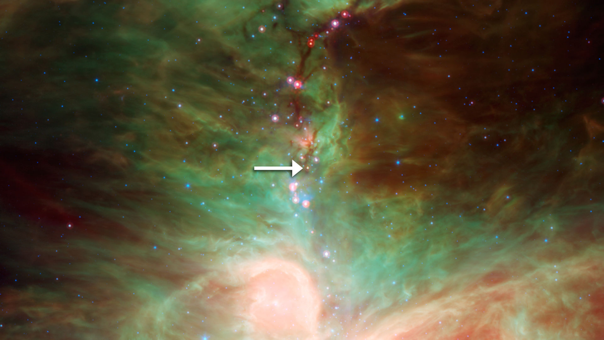 HOPS-68 Strzałka wskazuje na embrionalną gwiazdę HOPS-68.