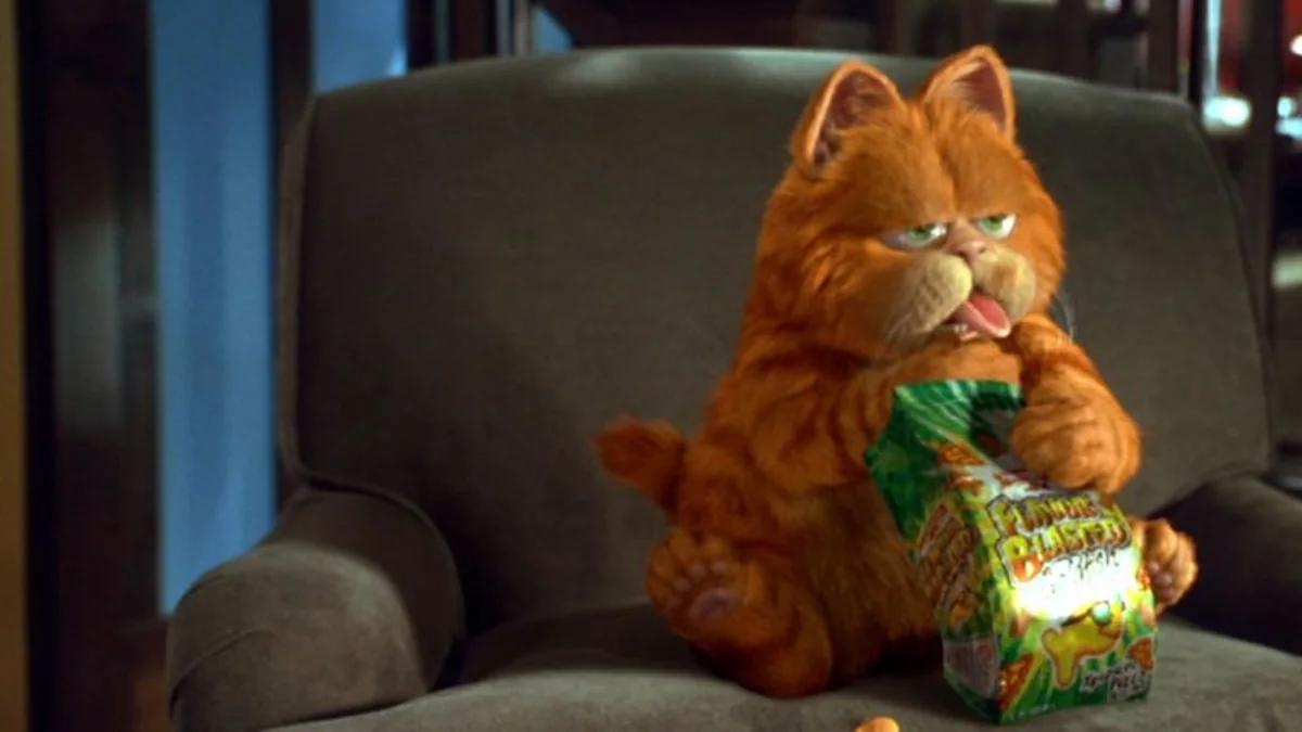 Jak ma na imię ten słynny, gruby kociak?