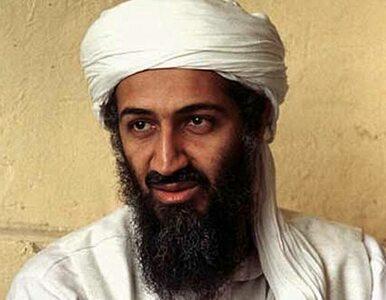 Pentagon pozwie za książkę o śmierci bin Ladena?