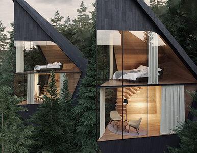 Marzyłeś o domku na drzewie? Włosi znaleźli lepsze rozwiązanie