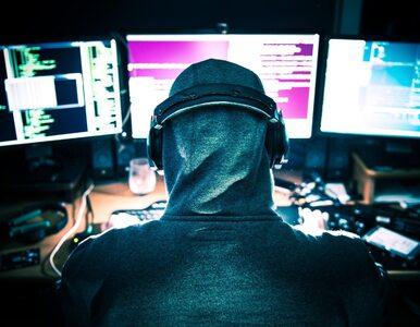 Były komendant policji ostrzega: Cyberpolicja potrzebna od zaraz