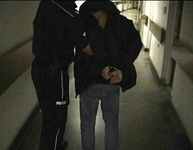 29-latek molestował dzieci swojego brata
