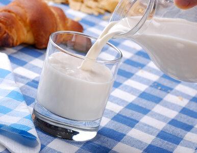 Mleko migdałowe, sojowe czy ryżowe? Czym się różnią i jak wybrać najlepsze?