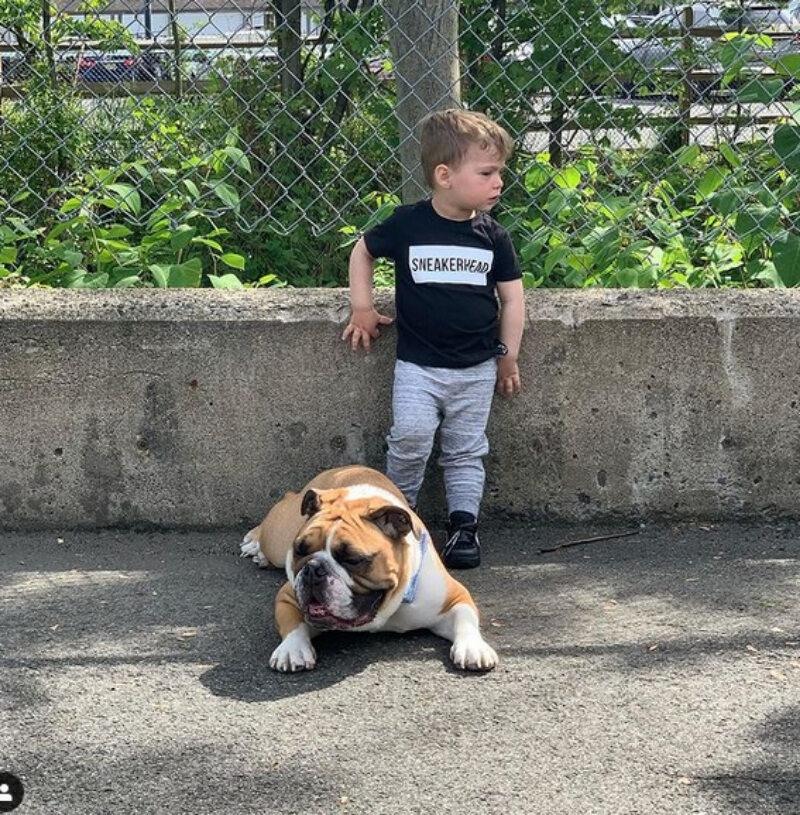 Chłopiec z buldogiem