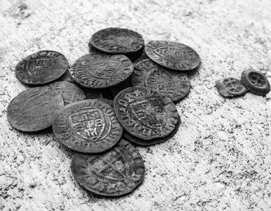 """Poszukiwacze w lesie pod Toruniem odkryli krzyżacki skarb. """"To rzadkość"""""""