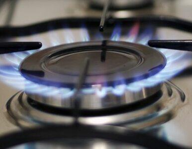 Rząd odrzucił projekt nowelizacji prawa energetycznego
