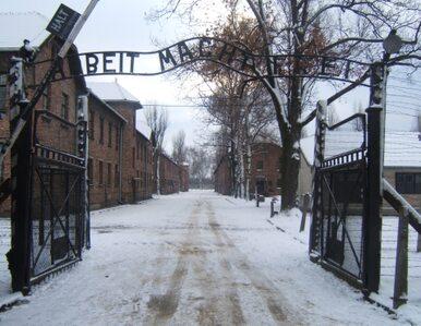 Historia Auschwitz trafi do sieci